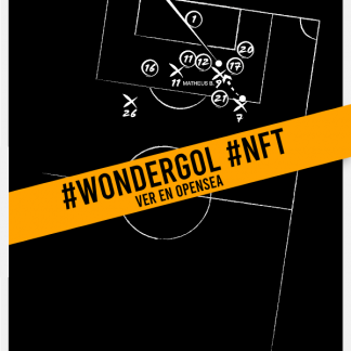 Wondergol MIR #002